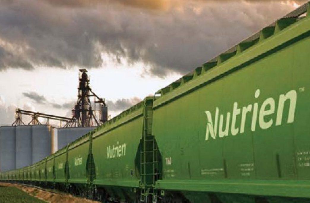 Из-за забастовок Nutrien сократит производство
