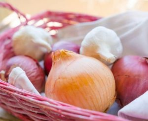 Рекомендации по удобрению для лука и чеснока