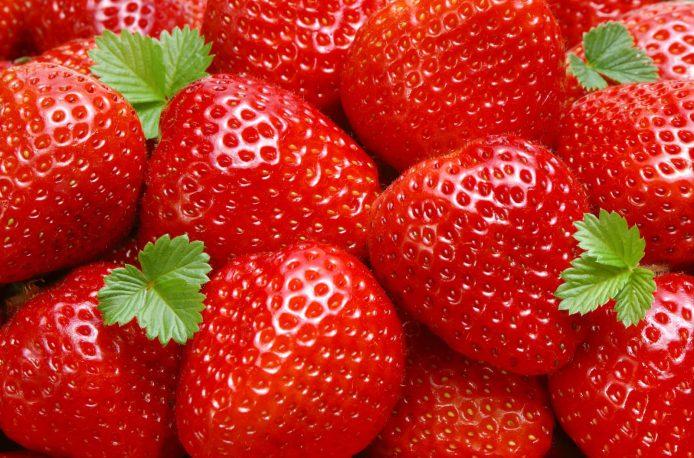 JGC Evergreen планирует выращивать клубнику в Хабаровском крае