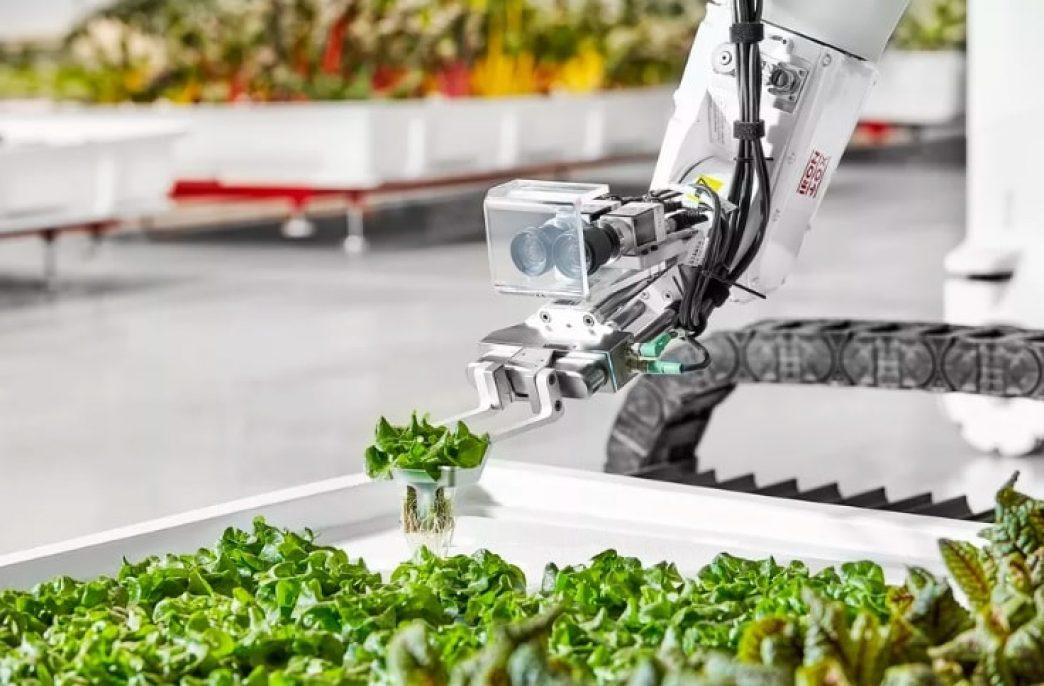 Iron Ox проведет автоматизацию ферм