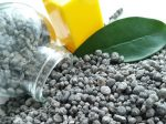 Когда и какие фосфорные удобрения нужны на участке