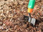 Осенние удобрения: какие выбрать и как правильно вносить