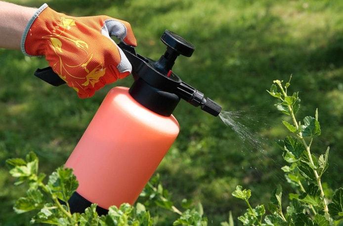Выпуск средств защиты растений набирает обороты