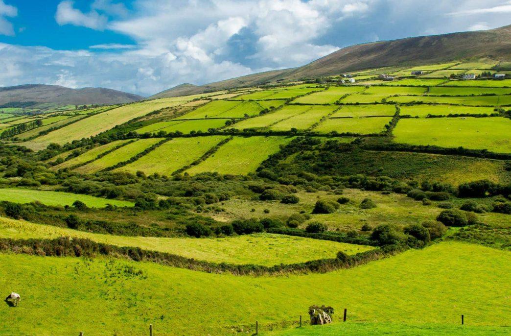 В Северной Ирландии изменились правила внесения удобрений