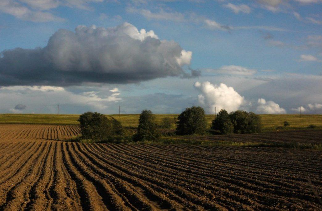Закупки удобрений в Башкортостане планируются на уровне 67 тыс. тонн