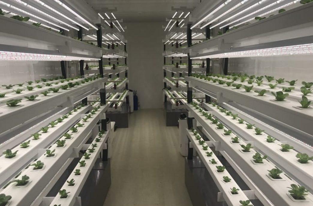 Вертикальные фермы стали модульными