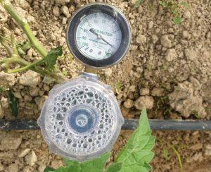 Новый полимер сохранит воду и удобрения