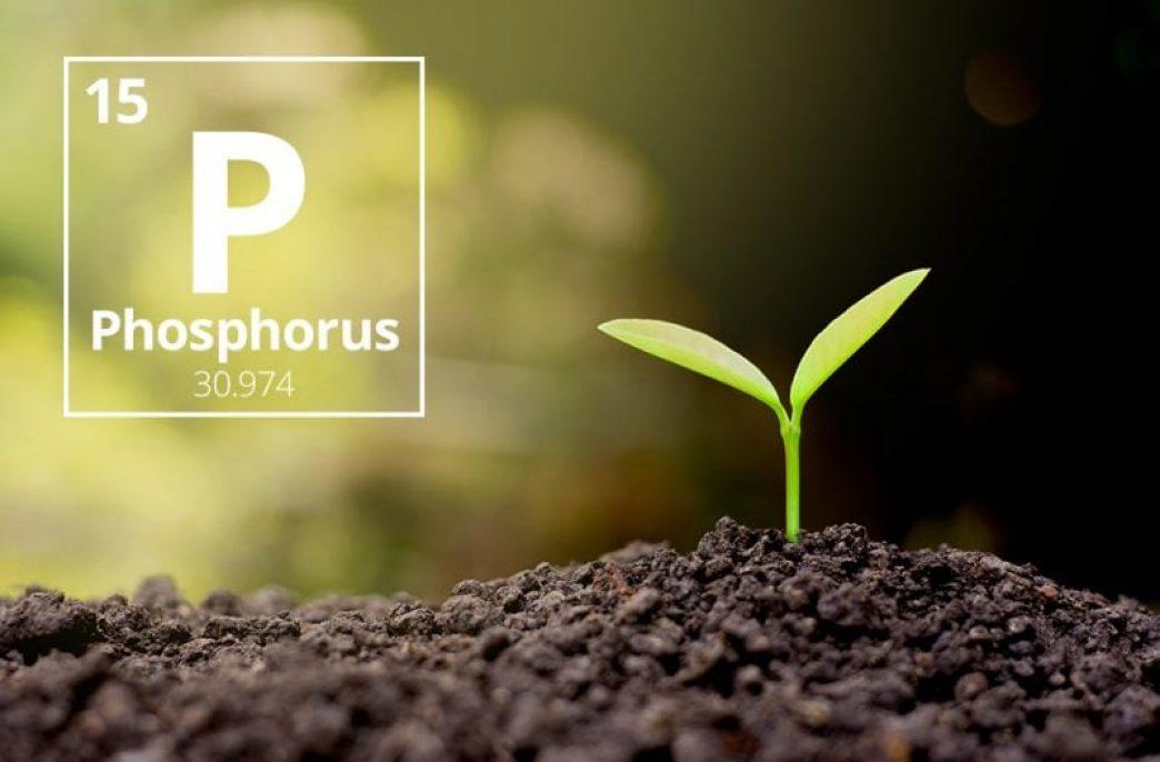 Italmatch Chemicals восстановит фосфор