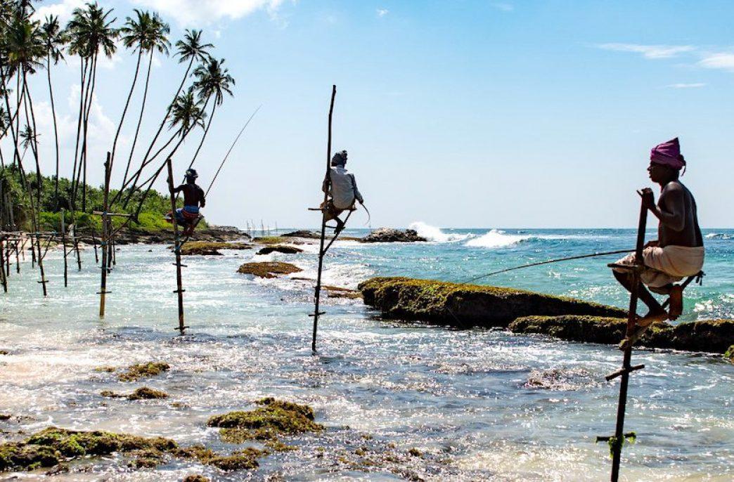 Власти Шри-Ланки закупят почти 80 тыс. тонн агрохимикатов