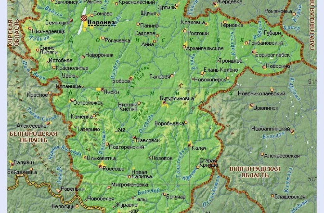 Яровыми в Воронежской области засеют свыше 1,7 млн. га