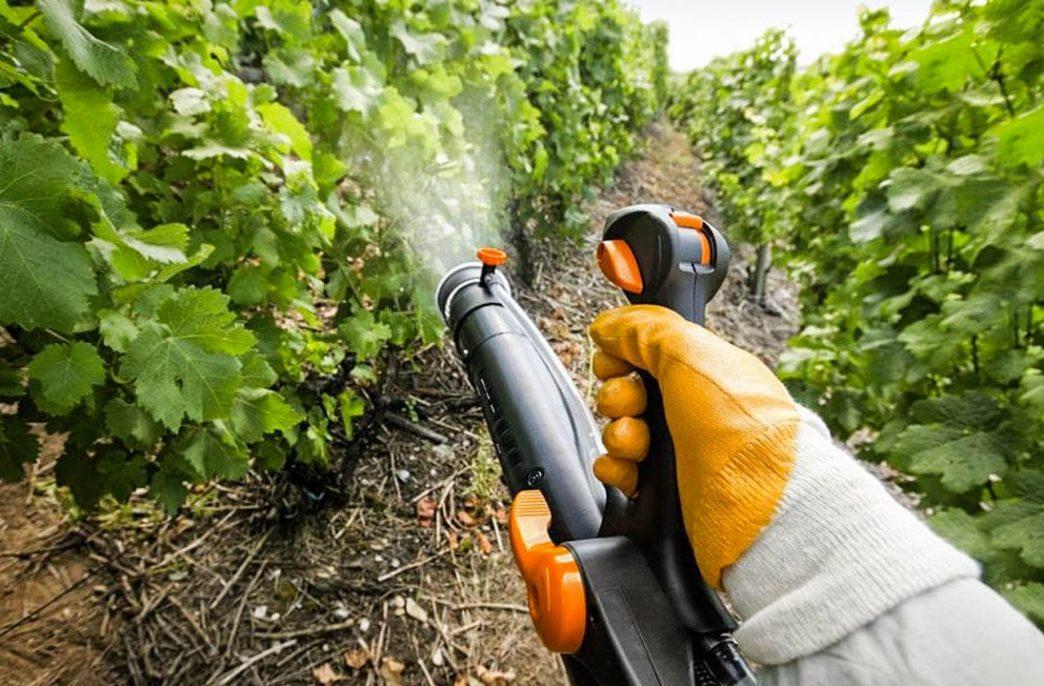 В России скакнуло производство средств защиты растений
