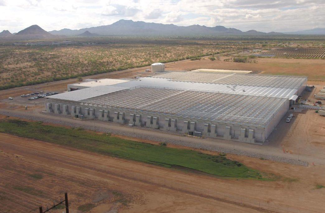 Bayer Group открыла тепличный комплекс в США