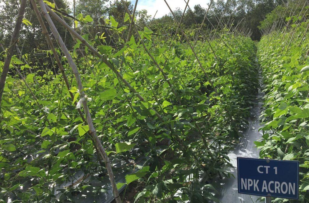 «Акрон» испытал удобрения во Вьетнаме