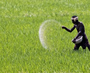 Deepak Fertilizers and Petrochemicals прекратила выпуск удобрений