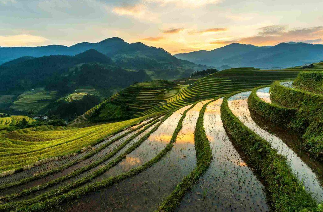 Вьетнам продолжит защищаться от импорта фосфорных удобрений