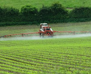 Corteva Agriscience и AgPlenus разработают новые гербициды