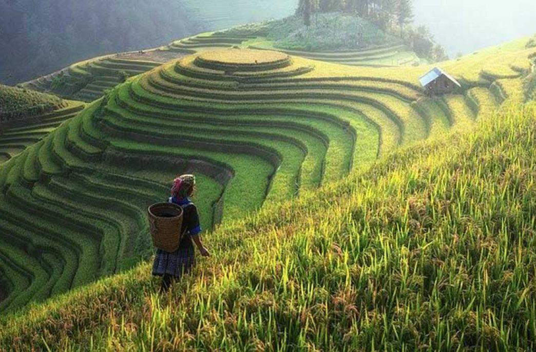 Китай получит «зеленые» кредиты