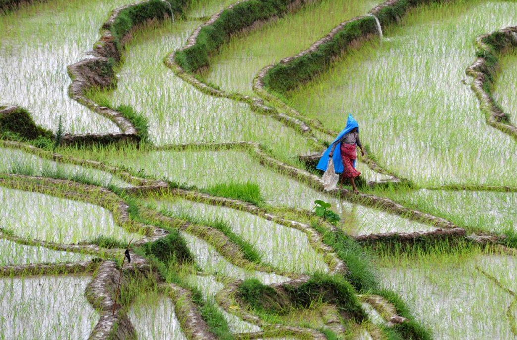 В Непале может возникнуть дефицит карбамида