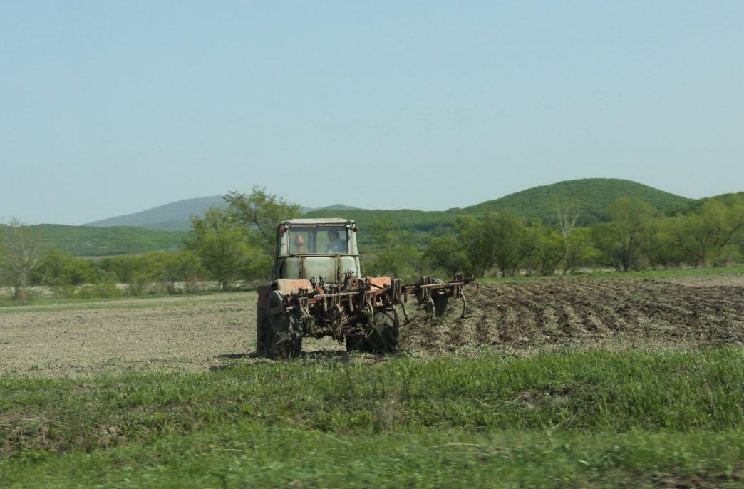 Посевные площади в Приморском крае расширятся на 3%