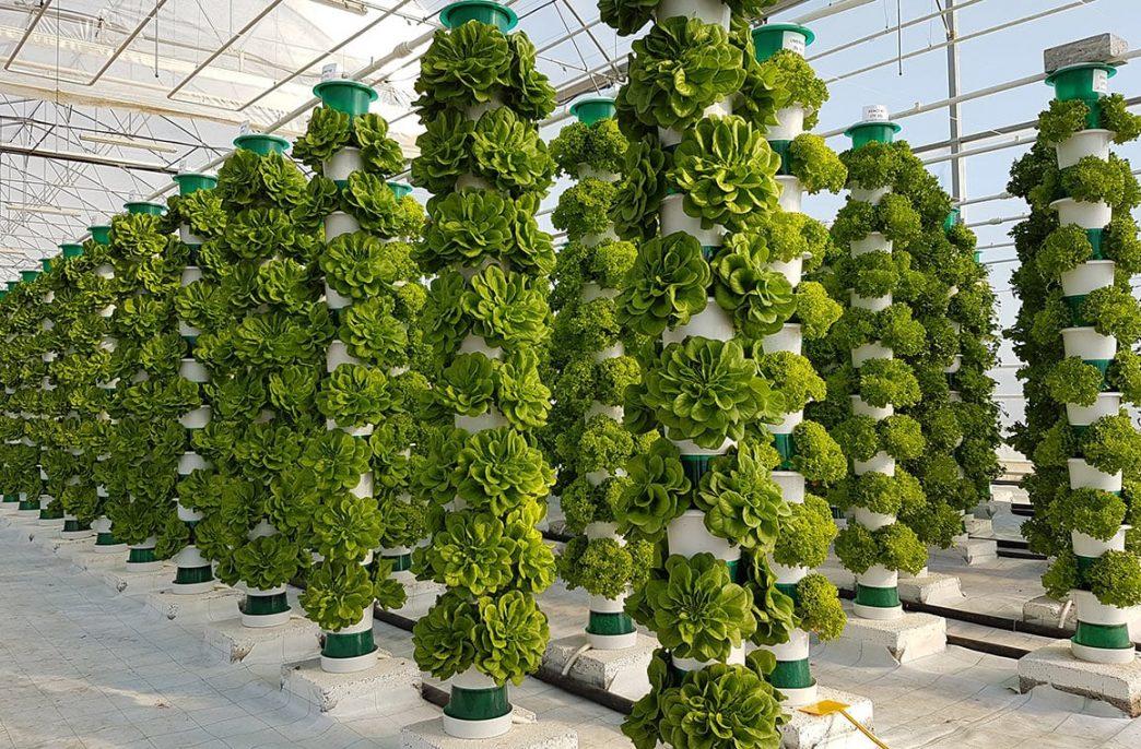 В Великобритании построят 40 вертикальных ферм