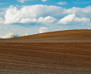 В Красноярский край завезено свыше 34 тыс. тонн удобрений