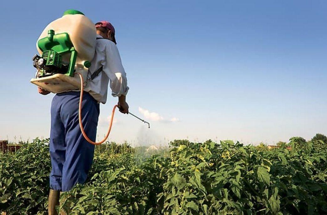 Инсектициды — что это такое, зачем и когда нужны