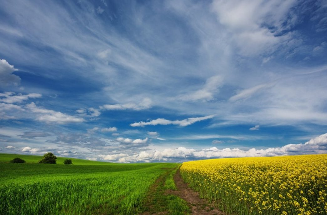 Nutrien позитивно смотрит на весну