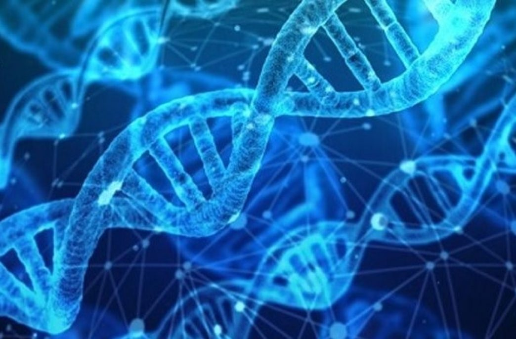 В США создан метод анализа RNAi-пестицидов в почве
