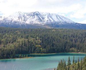 На севере Канады построят вертикальные фермы