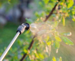 Индия пересмотрит запрет пестицидов