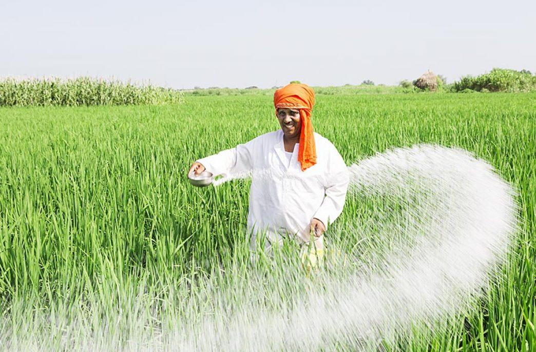 Продажи агрохимикатов в Индии почти удвоились