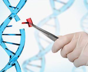 Найден ген, регулирующий поглощение фосфора