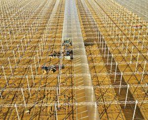 AppHarvest осенью откроет крупнейшую в США теплицу