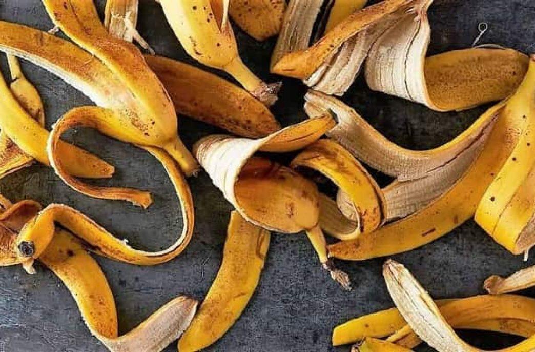 Банановая кожура в хозяйстве как натуральное эффективное удобрение