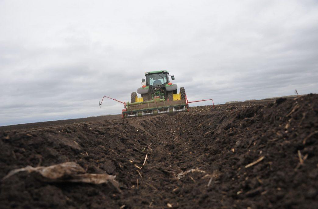 В Алтайском крае завершаются посевные работы