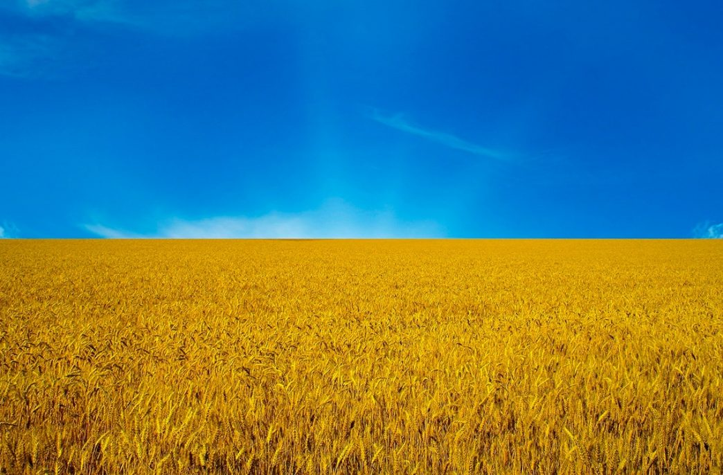 Ecofol планирует экспансию на рынок Украины
