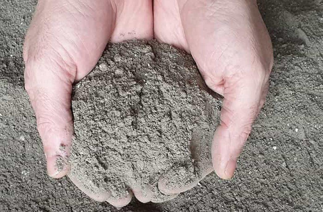 Древесная зола: состав удобрения и как его правильно применять