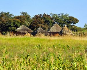 Зимбабве намерено развивать импортозамещение
