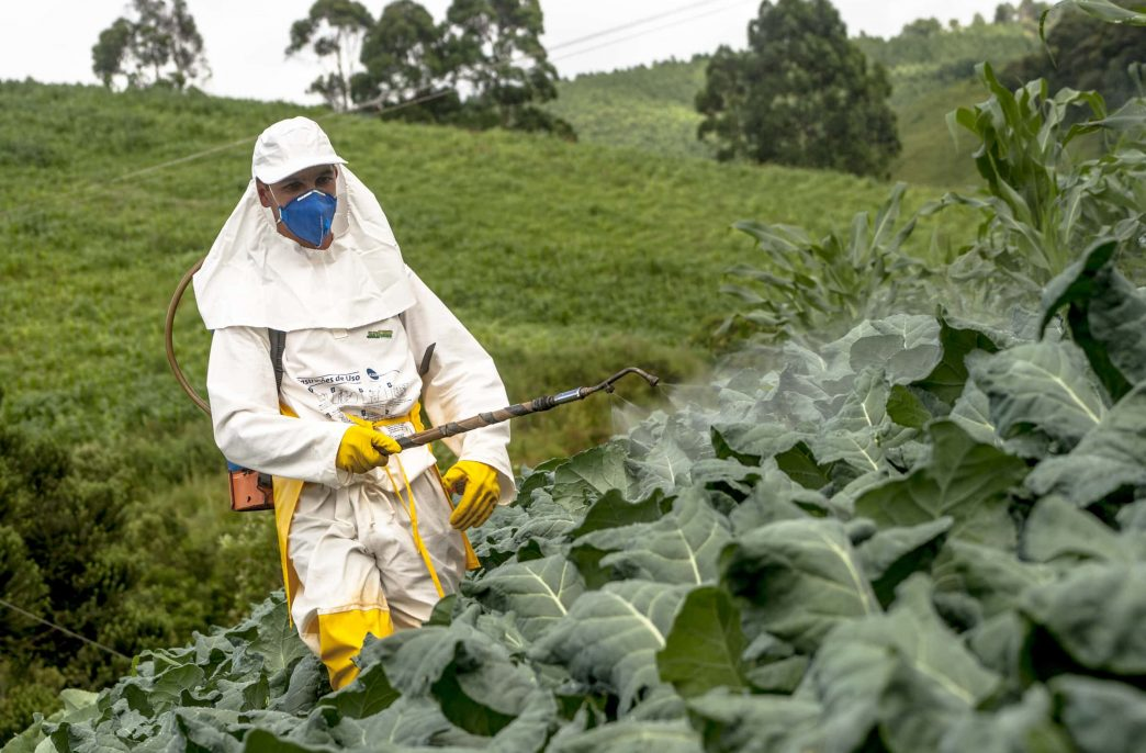 Производство средств защиты растений быстро увеличивается