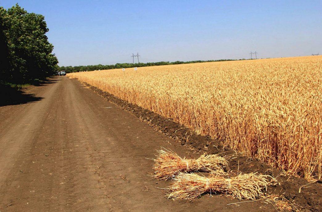 «ФосАгро» наращивает поставки в Ростовскую область