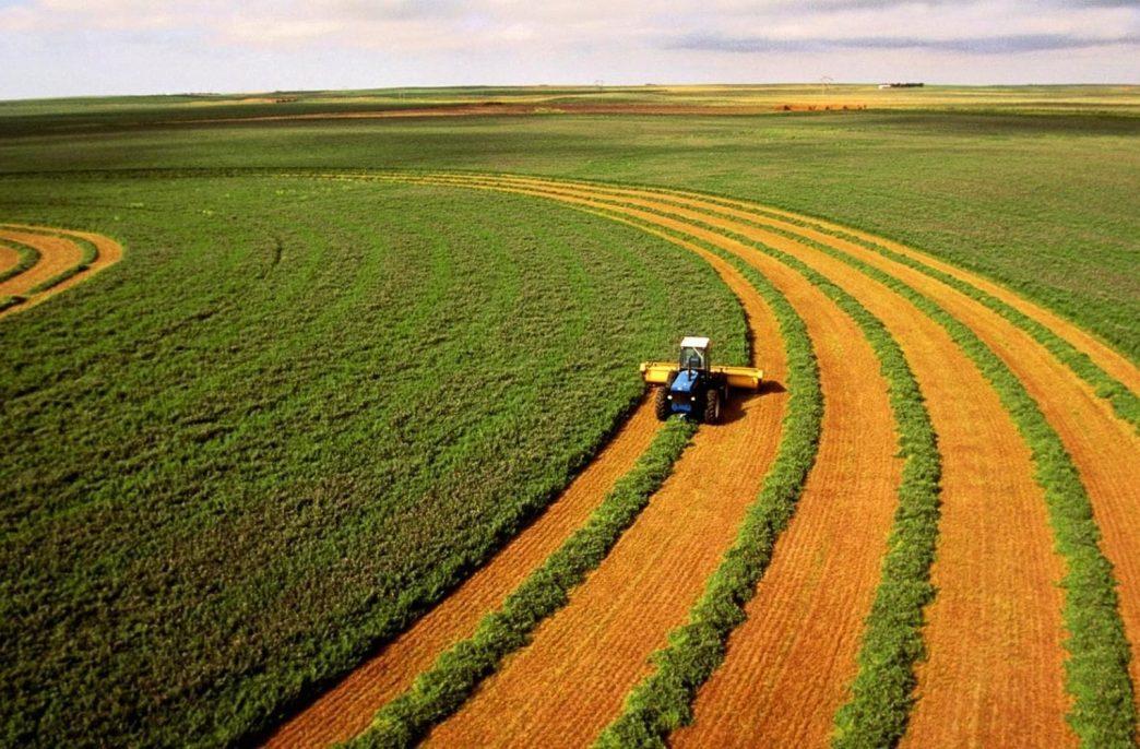 Владельцам сельскохозяйственных земель придется повышать их плодородие