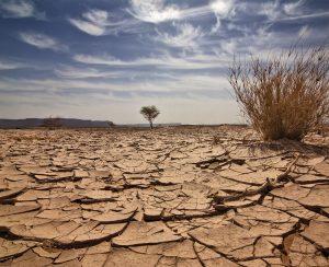 Зимбабве озаботилась экономией воды