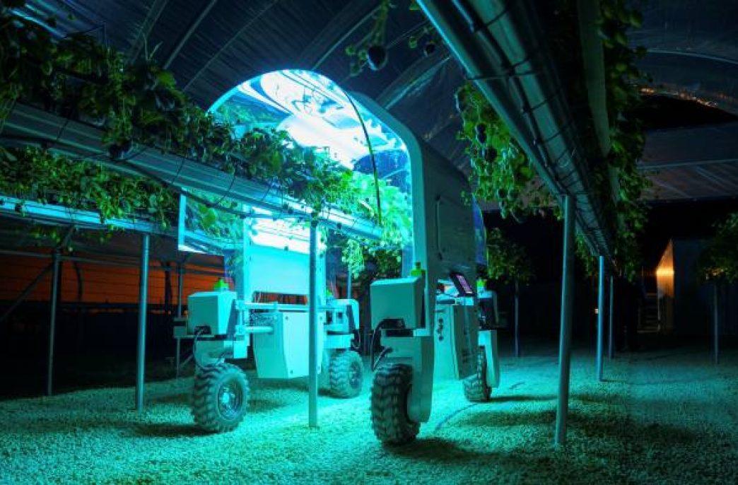 Пандемия может революционировать сельское хозяйство