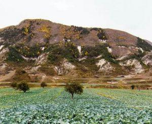 В Дагестане хотят повысить эффективность использования земель