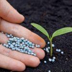 Производство азотных удобрений и тормозится, и растет