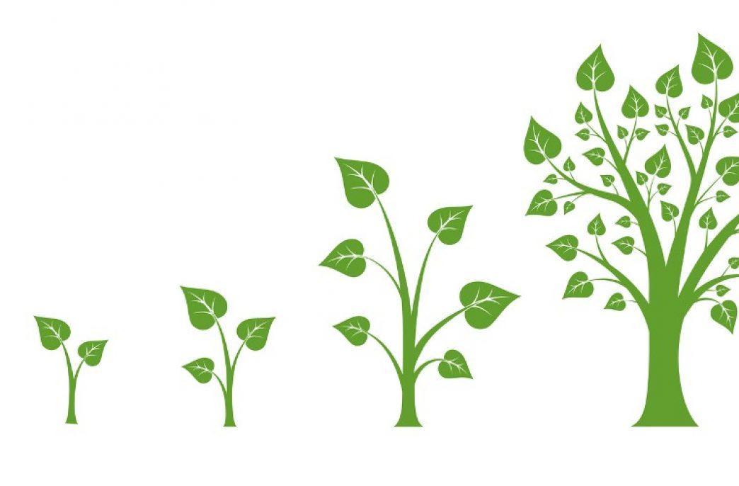 Itafos Conda готовят к органическому росту