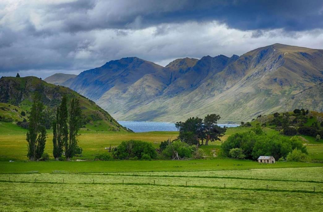 В Новой Зеландии хотят ввести налог на агрохимикаты
