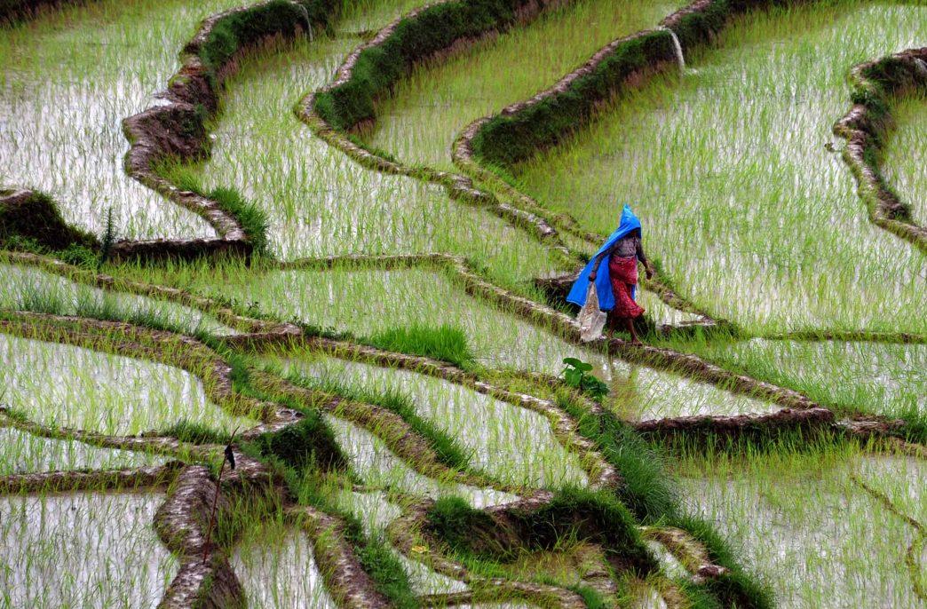 В Непале не хватает карбамида