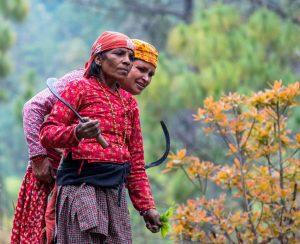 В Непале растет проблема нехватки удобрений