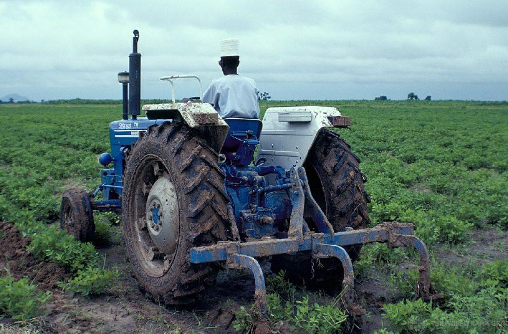 Нигерия решила поддержать аграриев